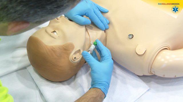 Intraveneuze canule in vena jugularis externa inbrengen